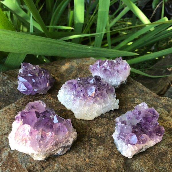 Small Amethyst Crystal Clusters Q1