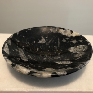 Fossil Orthoceras bowl